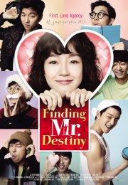 Finding Mr.Destiny 2010