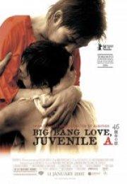 4.6 Billion Years of Love 2006